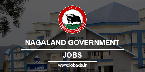 nagaland govt jobs 2021 - jobads.in